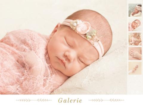 Babyfotografie Galerie